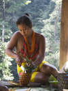 Panama - Chagres National Park: Embera Drua woman peels a pineapple for her family - photo by H.Olarte
