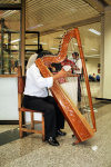Luque, Departamento Central, Paraguay: Paraguayan harp, with 38 strings turned to one major diatonic scale - musical instrument - musician - art / Arpa paraguaya - photo by A.Chang