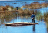 Lake Titicaca - Puno region, Peru: Uro boy on a totora reeds canoe - photo by J.Fekete