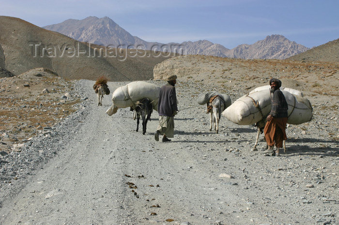 afghanistan26: Afghanistan - Herat province - men with their transport donkeys - mountain road - photo by E.Andersen - (c) Travel-Images.com - Stock Photography agency - Image Bank