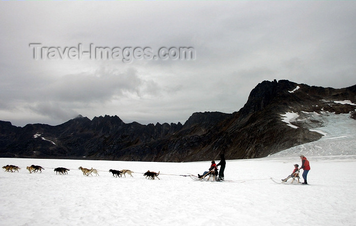 alaska102: Alaska - Skagway: Denver Glacier - dogsled passing (photo by Robert Ziff) - (c) Travel-Images.com - Stock Photography agency - Image Bank