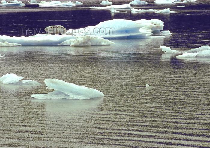 alaska112: Alaska - Juneau: ice blocks (photo by A.Walkinshaw) - (c) Travel-Images.com - Stock Photography agency - Image Bank