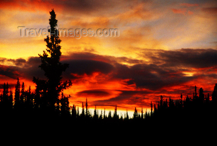 alaska135: Brooks range, Alaska: a tornado in at sunset on a Brooks range forest - photo by E.Petitalot - (c) Travel-Images.com - Stock Photography agency - Image Bank