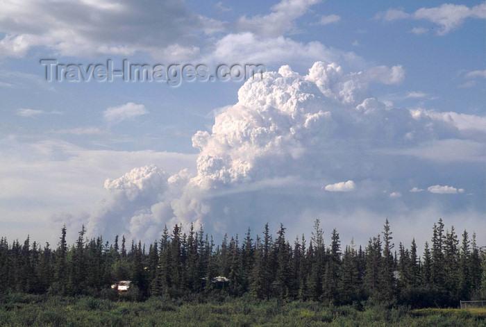 alaska144: Brooks range, Alaska: forest fire near Fort Yukon village along the Yukon river - photo by E.Petitalot - (c) Travel-Images.com - Stock Photography agency - Image Bank