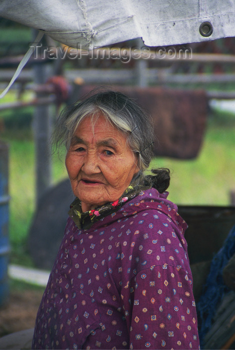 alaska151: Alaska - North - Brooks range - old Athabascan woman in Ambler village - photo by E.Petitalot - (c) Travel-Images.com - Stock Photography agency - Image Bank