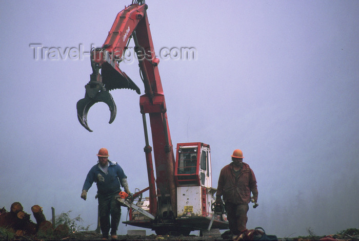alaska180: Alaska - Prince of Wales island: forestry workers and machinery - photo by E.Petitalot - (c) Travel-Images.com - Stock Photography agency - Image Bank
