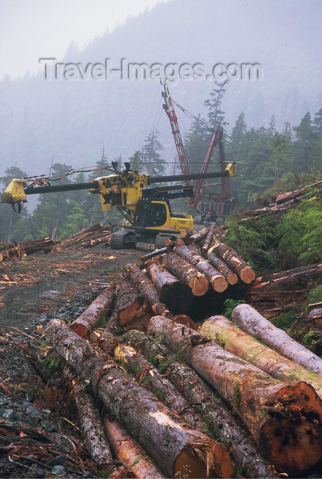 alaska185: Alaska - Prince of Wales island: machine for cutting trees - photo by E.Petitalot - (c) Travel-Images.com - Stock Photography agency - Image Bank