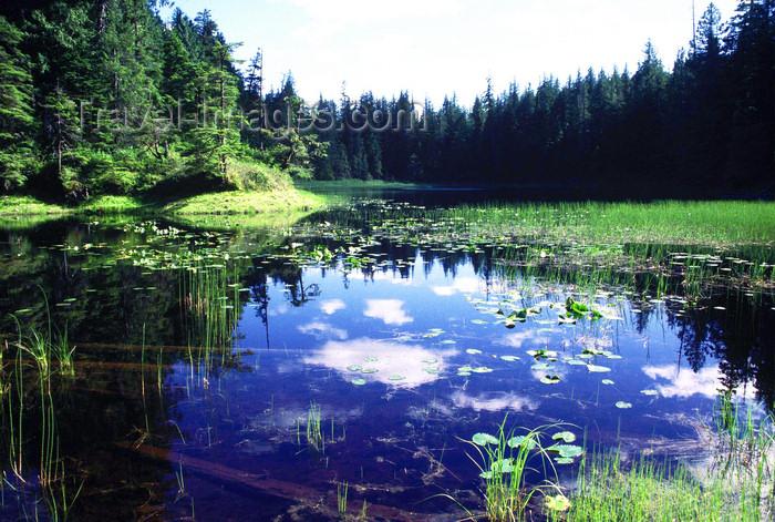 alaska190: Brooks range, Alaska: small lake - photo by E.Petitalot - (c) Travel-Images.com - Stock Photography agency - Image Bank