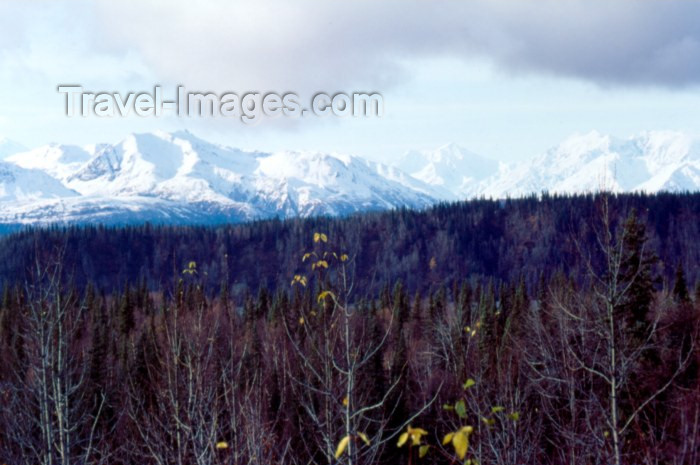 alaska52: Alaska - Anchorage: mountains and forest - Chugach Mountains - photo by F.Rigaud - (c) Travel-Images.com - Stock Photography agency - Image Bank
