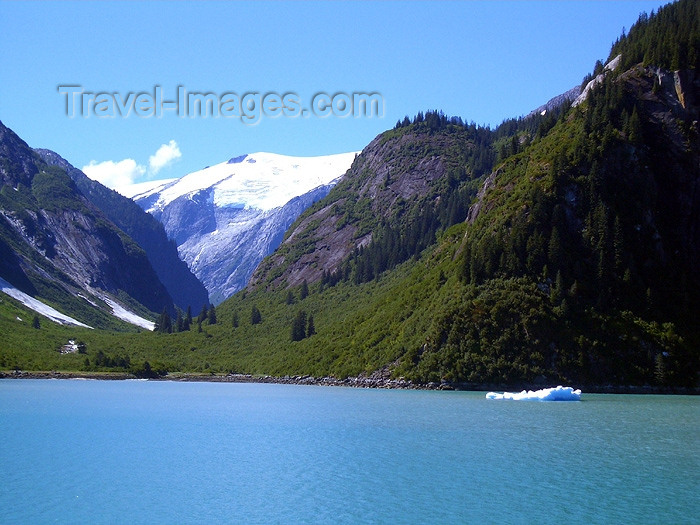 alaska65: Alaska's Inside Passage - Tracy Arm Fjord: slopes (photo by Robert Ziff) - (c) Travel-Images.com - Stock Photography agency - Image Bank