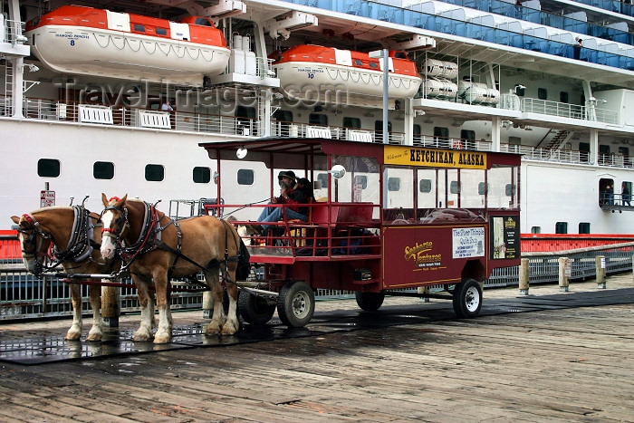 alaska87: Alaska - Ketchikan: a cart awaits the passengers of the Diamond Princess - Seahorse ventures - horse drawn tours (photo by Robert Ziff) - (c) Travel-Images.com - Stock Photography agency - Image Bank