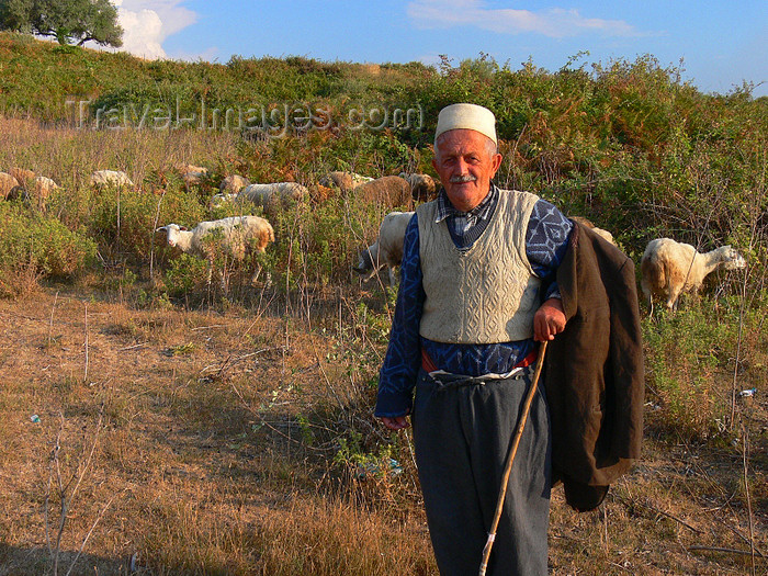 albania103: Apollonia, Fier County, Albania: old shepherd from the village of Pojan - photo by J.Kaman - (c) Travel-Images.com - Stock Photography agency - Image Bank
