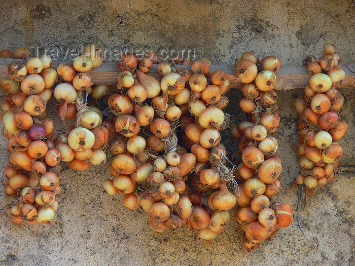 albania160: Kamnik, Kolonjë, Korçë county, Albania: onion braids on a wall - photo by J.Kaman - (c) Travel-Images.com - Stock Photography agency - Image Bank