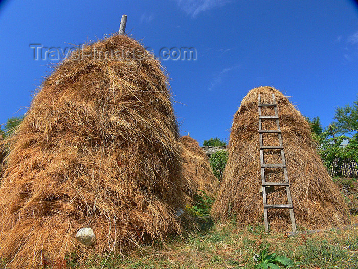 albania163: Kamnik, Kolonjë, Korçë county, Albania: haystacks and ladder - photo by J.Kaman - (c) Travel-Images.com - Stock Photography agency - Image Bank