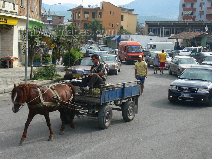albania35: Kruje, Durres County, Albania: albanian transport and traffic - horse cart in the city - photo by J.Kaman - (c) Travel-Images.com - Stock Photography agency - Image Bank