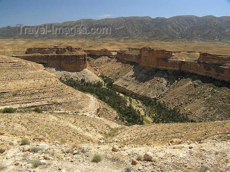 algeria128: Algeria / Algerie - Gorges de Tighanimine - Oued El Abiod - Batna wilaya - photo by J.Kaman - (c) Travel-Images.com - Stock Photography agency - Image Bank