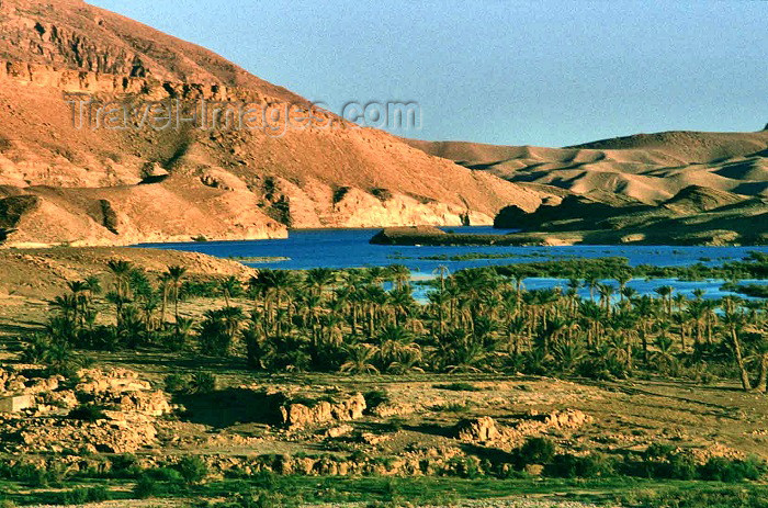 algeria13: Algeria / Algérie - En Nakhla - Batna wilaya: lake side - photo by C.Boutabba - côté de lac - (c) Travel-Images.com - Stock Photography agency - Image Bank