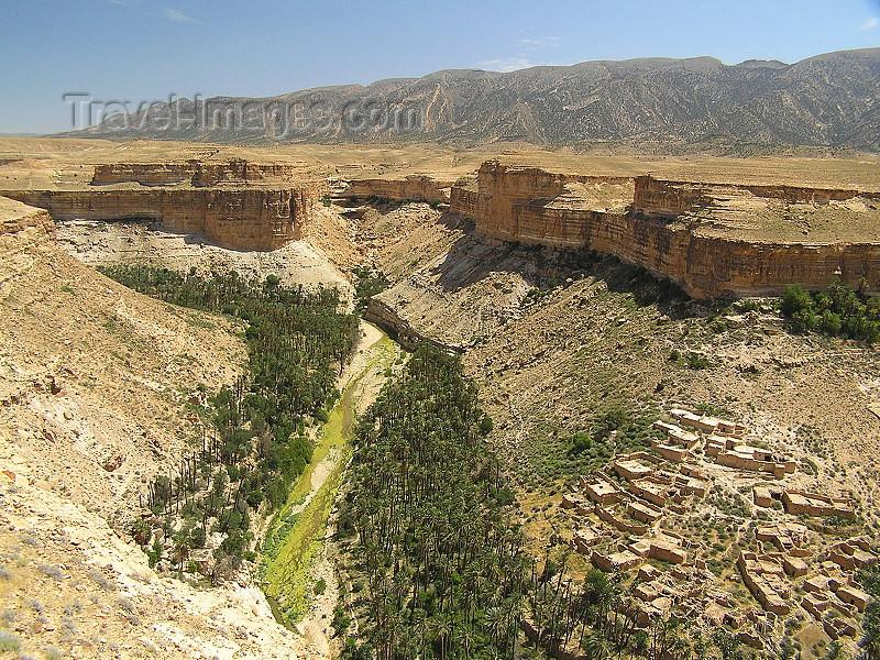algeria132: Algeria / Algerie - Gorges de Tighanimine - Oued El Abiod - oasis - Batna wilaya - photo by J.Kaman - (c) Travel-Images.com - Stock Photography agency - Image Bank