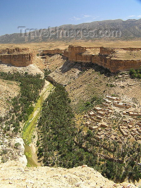 algeria133: Algeria / Algerie - Gorges de Tighanimine - El Abiod - Batna wilaya -  Massif des Aurès: houses on the slope - photo by J.Kaman - maisons sur la pente - (c) Travel-Images.com - Stock Photography agency - Image Bank