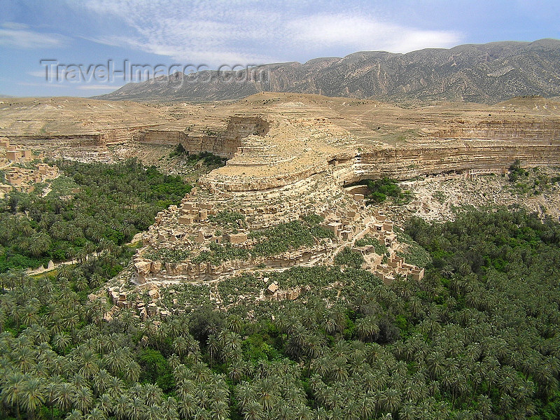 algeria138: Algeria / Algerie - Gorges de Tighanimine - El Abiod - Batna wilaya -  Massif des Aurès: river of palms - photo by J.Kaman - fleuve de palmiers - (c) Travel-Images.com - Stock Photography agency - Image Bank