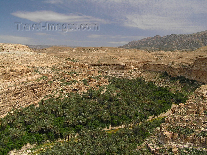 algeria139: Algeria / Algerie - Gorges de Tighanimine - El Abiod - Batna wilaya -  Massif des Aurès: oasis in the canyon - photo by J.Kaman - oasis dans la gorge - (c) Travel-Images.com - Stock Photography agency - Image Bank
