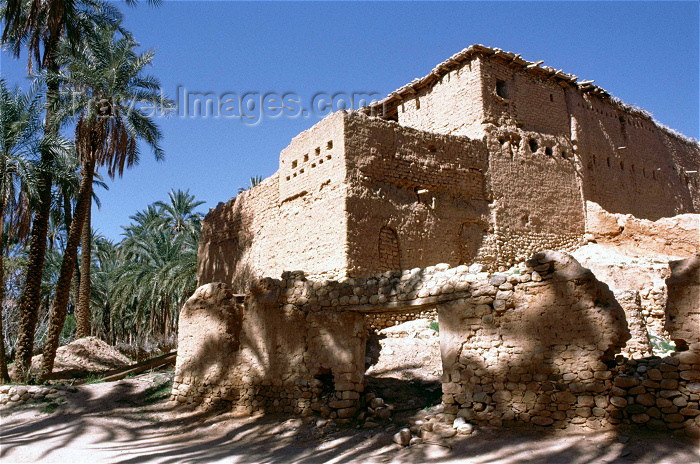 algeria18: Algeria / Algérie - M'Chounech: ruins in the sun - photo by C.Boutabba - ruines au soleil - (c) Travel-Images.com - Stock Photography agency - Image Bank