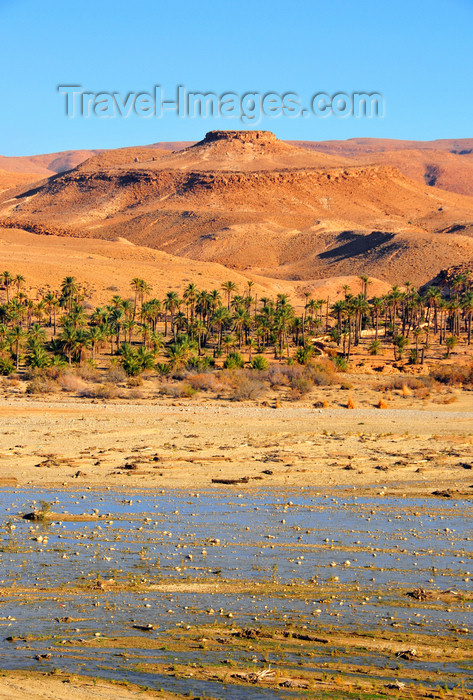algeria3: Biskra, Algeria / Algérie: Oued El Abiod - wadi - photo by M.Torres | Oued El Abiod - (c) Travel-Images.com - Stock Photography agency - Image Bank