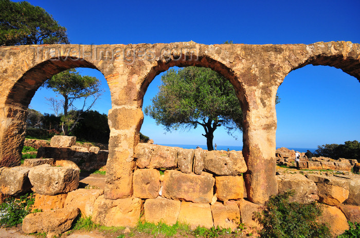 algeria395: Tipaza, Algeria / Algérie: arches - Great Christian Basilica - Tipasa Roman ruins, Unesco World Heritage site | arcade - Grande Basilique Chrétienne - ruines romaines de Tipasa, Patrimoine mondial de l'UNESCO - photo by M.Torres - (c) Travel-Images.com - Stock Photography agency - Image Bank