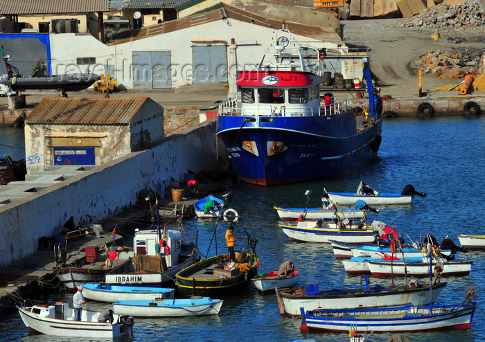 algeria433: Cherchell - Tipasa wilaya, Algeria / Algérie: harbour - trawler and smaller boats | port - chalutier et petits bateaux - photo by M.Torres - (c) Travel-Images.com - Stock Photography agency - Image Bank