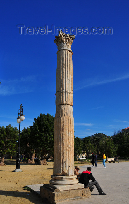 algeria435: Cherchell - Tipasa wilaya, Algeria / Algérie: Roman Square - Roman column and ombú trees | Place Romaine - colonne romaine et belombras - photo by M.Torres - (c) Travel-Images.com - Stock Photography agency - Image Bank