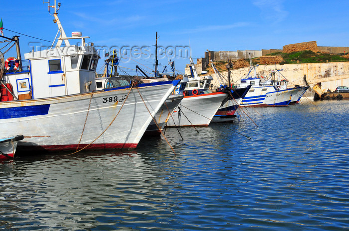 algeria448: Cherchell - Tipasa wilaya, Algeria / Algérie: harbour - prows | port - étraves - photo by M.Torres - (c) Travel-Images.com - Stock Photography agency - Image Bank