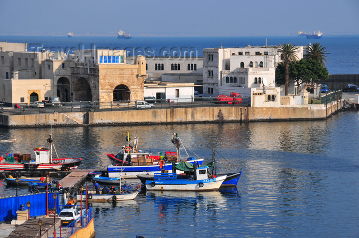 algeria498: Algiers / Alger - Algeria / Algérie: fishing harbour and the northern pier | Môle de Pêche et Jetée Nord - photo by M.Torres - (c) Travel-Images.com - Stock Photography agency - Image Bank