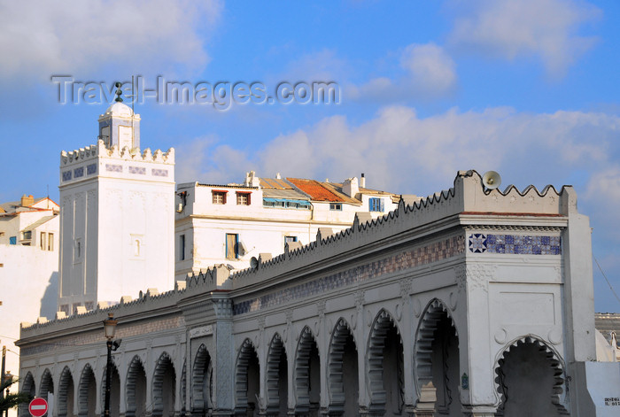 algeria513: Algiers / Alger - Algeria / Alg&#233;rie: the Grand Mosque - Djam&#226;a Kebir - Almoravid  period - Anatolian style - Maliki rite | Djem&#226;a El Kebir - arcades de la grande mosqu&#233;e - p&#233;riode almoravide - style import&#233; d'Anatolie, rite Malekite - photo by M.Torres - (c) Travel-Images.com - Stock Photography agency - Image Bank