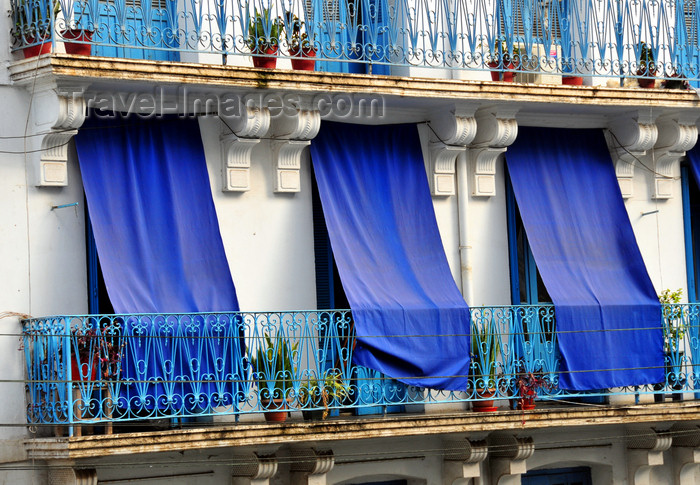 algeria531: Algiers / Alger - Algeria / Algérie: white building with blue curtains in the exterior - Asselah Hocine street - 'Algiers the White' | immeuble blanc avec des rideaux bleus à l'extérieur - Rue Asselah Hocine, ex-Rue Alfred Lelluch - Alger la Blanche - photo by M.Torres - (c) Travel-Images.com - Stock Photography agency - Image Bank