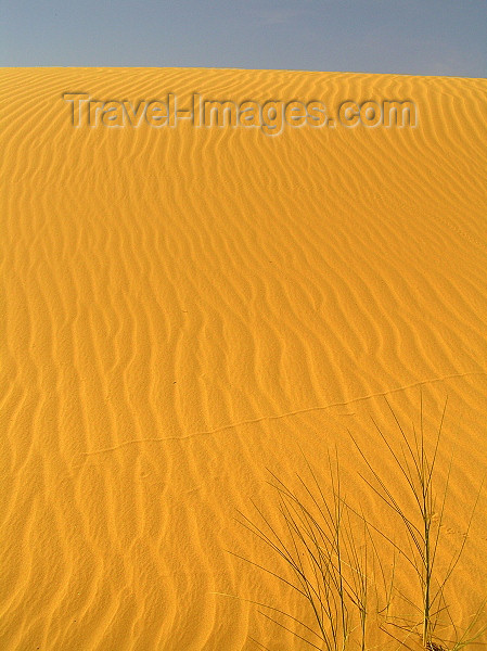 algeria54: Algeria / Algerie - Sahara desert: sand dunes - waves - photo by J.Kaman - dunes de sable - ondes - (c) Travel-Images.com - Stock Photography agency - Image Bank