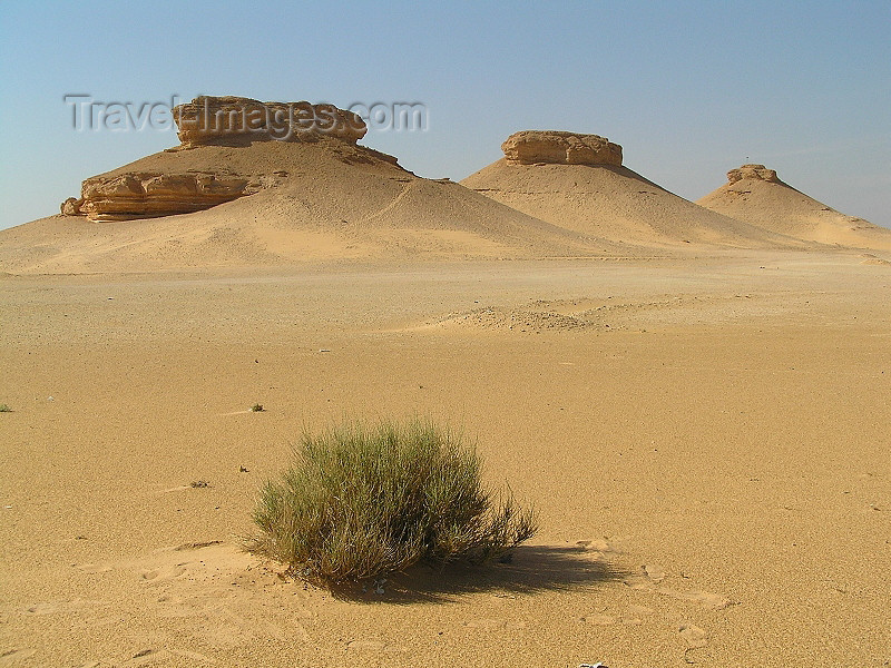 algeria55: Algeria / Algerie - Sahara desert : mesas - unusual sandstone formations - photo by J.Kaman - formations de grès - (c) Travel-Images.com - Stock Photography agency - Image Bank