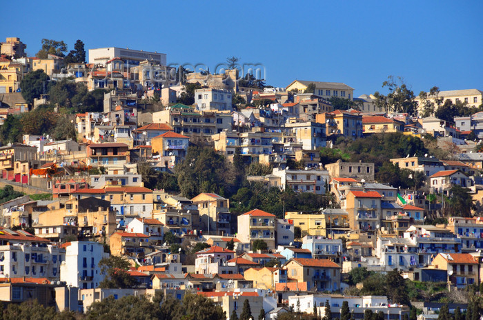 algeria561: Algiers / Alger - Algeria / Algérie: Z'ghara quarter - residential buildings - Bologhine | quartier de Zeghara - logement populaire - Bologhine - photo by M.Torres - (c) Travel-Images.com - Stock Photography agency - Image Bank