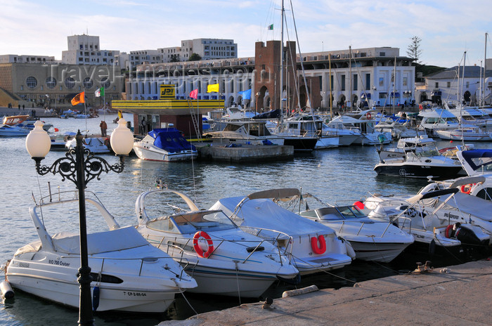 algeria731: Sidi Fredj  / Sidi-Ferruch - Alger wilaya - Algeria / Algérie: the marina | port de plaisance - photo by M.Torres - (c) Travel-Images.com - Stock Photography agency - Image Bank