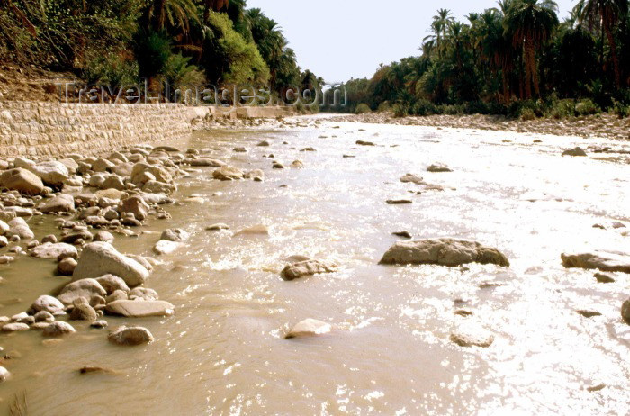 algeria8: Algeria / Algérie - M'Chouneche: on the river - wadi - photo by C.Boutabba - sur le fleuve - (c) Travel-Images.com - Stock Photography agency - Image Bank