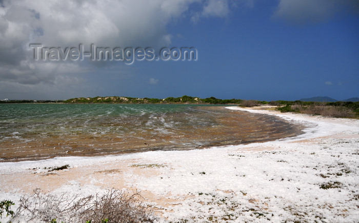 anguilla20: Cove Pond, West End Village, Anguilla: salty waters surrounded by natural white foam - photo by M.Torres - (c) Travel-Images.com - Stock Photography agency - Image Bank