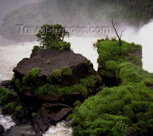 argentina24: Argentina - Iguazu Falls (Misiones province): in the mist - photo by Ruben Bittermann - (c) Travel-Images.com - Stock Photography agency - Image Bank