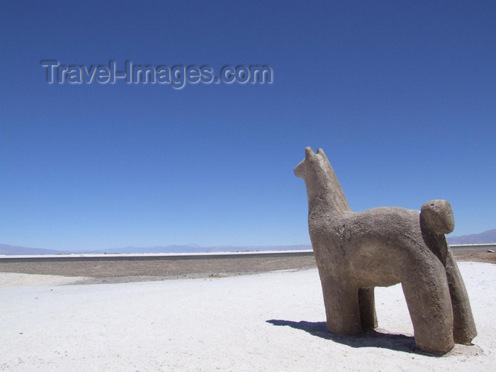 argentina287: Argentina - Salta province - Salinas Grandes -  Vicuña statue - images of South America by M.Bergsma - (c) Travel-Images.com - Stock Photography agency - Image Bank