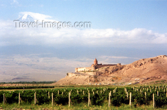 armenia31: Armenia - Khor Virap, Ararat province: the monastery between Mount Ararat and the vineyards of Lusarvat village - photo by M.Torres - (c) Travel-Images.com - Stock Photography agency - Image Bank