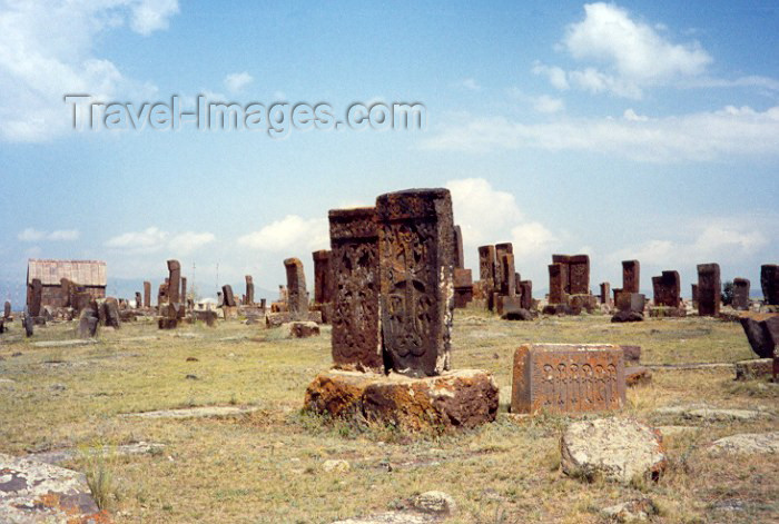 armenia60: Armenia - Noratous, Gegharkunik province: Ashkar forest  - photo by M.Torres - (c) Travel-Images.com - Stock Photography agency - Image Bank