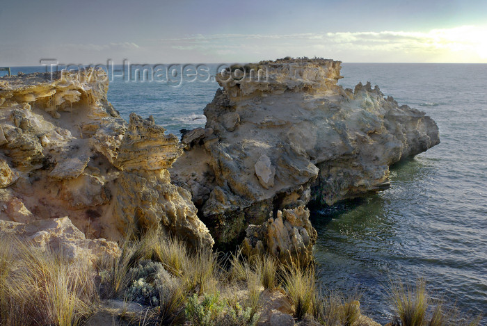 australia25: Australia - Canunda National Park, South Australia - photo by G.Scheer - (c) Travel-Images.com - Stock Photography agency - Image Bank