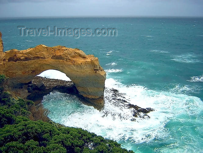 australia456: Australia - Great Ocean Road (Victoria): the Arch - photo by Luca Dal Bo - (c) Travel-Images.com - Stock Photography agency - Image Bank