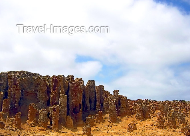 australia458: Australia - Cape Nelson SP (Victoria): Cape Duquesne Petrified Forest - photo by Luca Dal Bo - (c) Travel-Images.com - Stock Photography agency - Image Bank