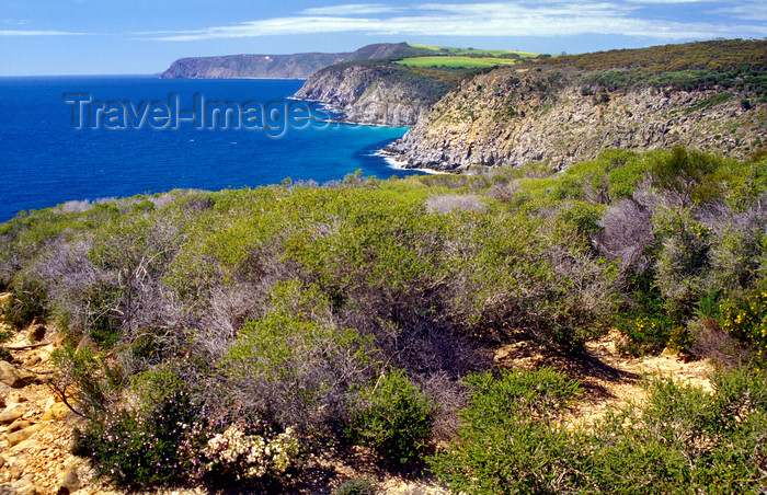 australia684: Australia - Kangaroo Is., South Australia: North coast cliffs - photo by G.Scheer - (c) Travel-Images.com - Stock Photography agency - Image Bank