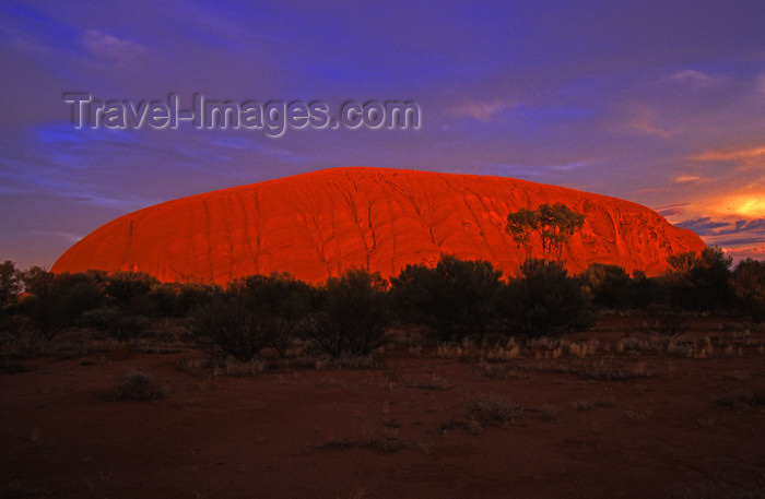 australia728: Ayers Rock / Uluru - Northern Territory, Australia: intense colours - photo by Y.Xu - (c) Travel-Images.com - Stock Photography agency - Image Bank