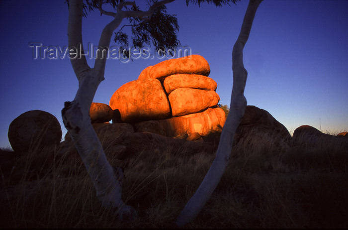 australia731: Devil's Marbles Conservation Reserve, NT, Australia: granite rocks and tree - photo by Y.Xu - (c) Travel-Images.com - Stock Photography agency - Image Bank